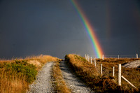 033 Rainbow lane _MG_5289